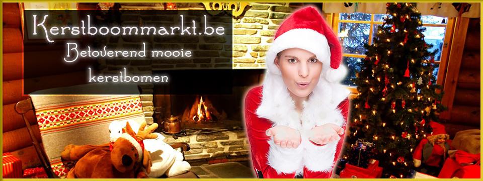 Kerstboomonline.be